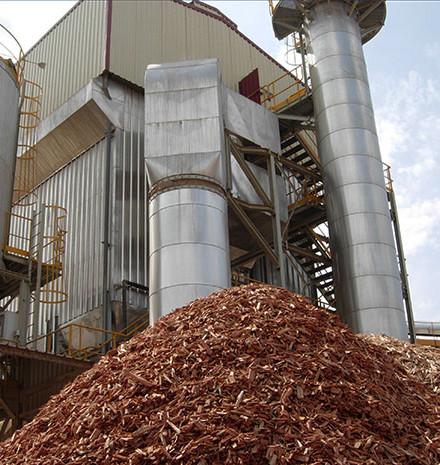 Gestión de Biomasas